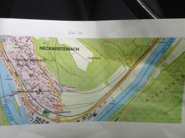 Walbranduebung_Neckarsteinach_14062015